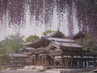 IMG_1261.JPGのサムネール画像
