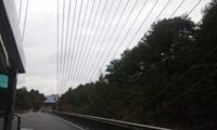 吊り橋.JPG