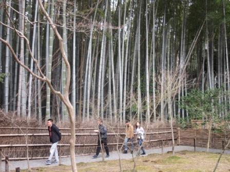 http://www.kyotominsai.co.jp/mblog/uploadimg/CIG_IMG001%20%282%29.jpg