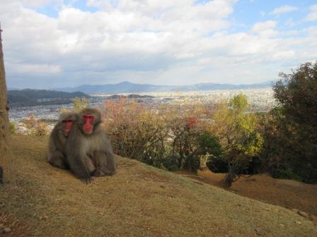 http://www.kyotominsai.co.jp/mblog/uploadimg/IMG_1281.JPG