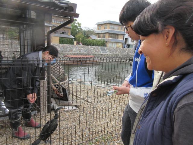 http://www.kyotominsai.co.jp/mblog/uploadimg/IMG_2537.JPG