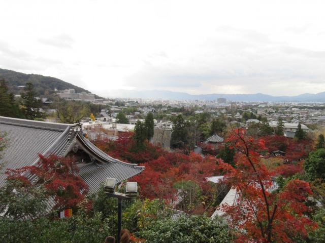 http://www.kyotominsai.co.jp/mblog/uploadimg/IMG_2623.JPG