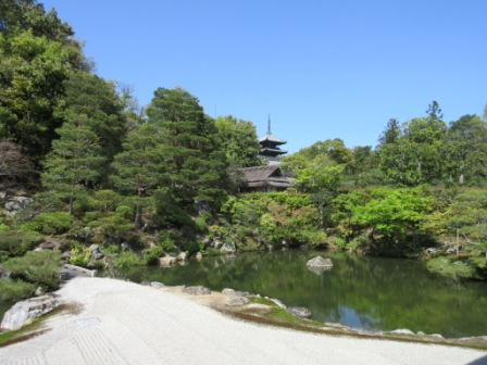 http://www.kyotominsai.co.jp/mblog/uploadimg/oiy.jpg