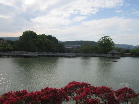 http://www.kyotominsai.co.jp/mblog/uploadimg/qqqqq8.jpg