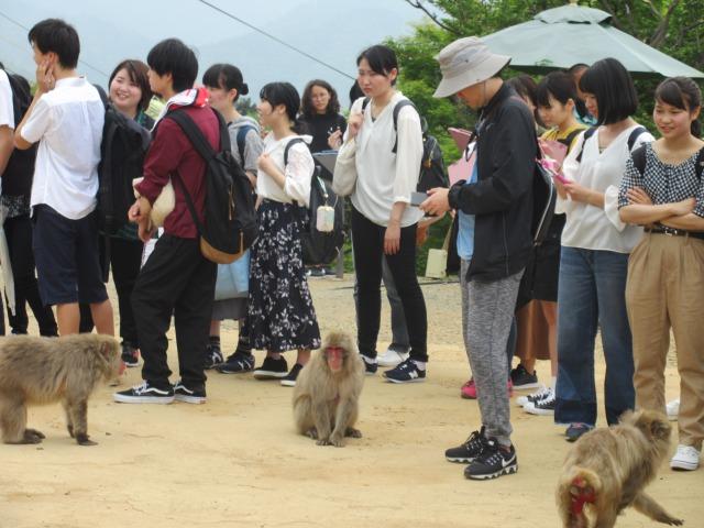 http://www.kyotominsai.co.jp/mblog/uploadimg/s_IMG_1941.JPG