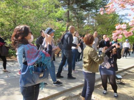 http://www.kyotominsai.co.jp/mblog/uploadimg/ss.jpg