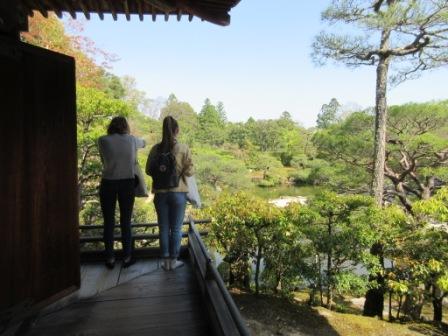 http://www.kyotominsai.co.jp/mblog/uploadimg/ss3.jpg