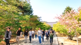 http://www.kyotominsai.co.jp/mblog/uploadimg/sss4.jpeg
